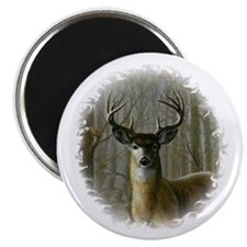 WHITE TAILED BUCK Magnet