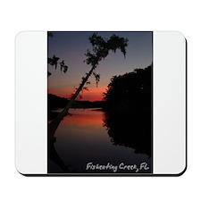 Fisheating Creek -Cypress Sun Mousepad