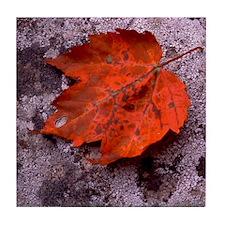 Red Oak Tile Coaster