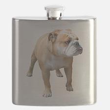 Funny American bulldog Flask