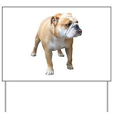 Cute American bulldog Yard Sign