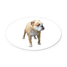 Funny English bulldog mom Oval Car Magnet