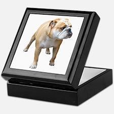 Cute English bull dog Keepsake Box