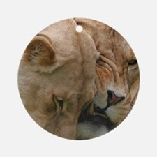 Nuzzling Lions Ornament (Round)