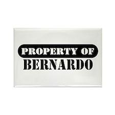 Property of Bernardo Rectangle Magnet