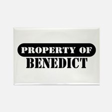 Property of Benedict Rectangle Magnet