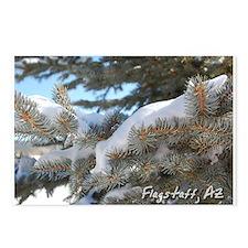 Flagstaff, Arizona Postcards (Package of 8)