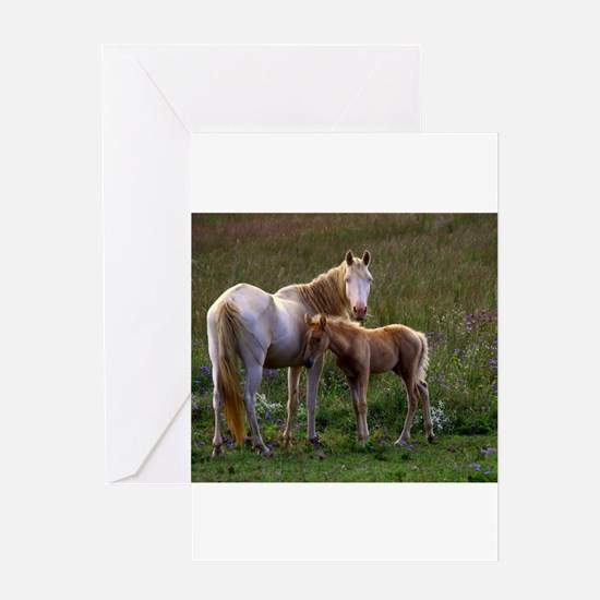 Mare and Foal Greeting Cards