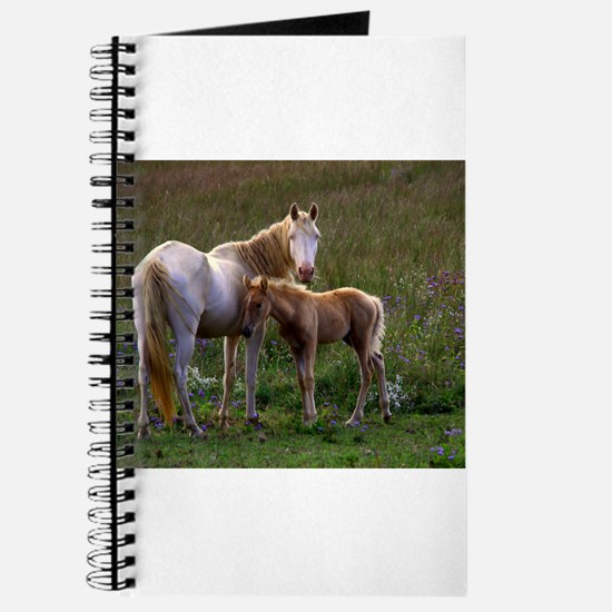 Mare and Foal Journal