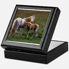 Mare and Foal Keepsake Box