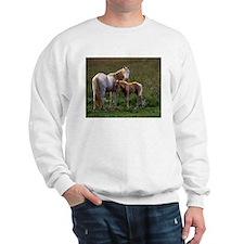 Mare and Foal Sweatshirt
