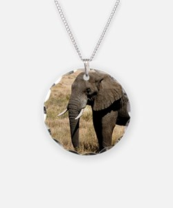 African Bush Elephant moving to success a Necklace