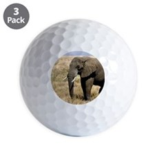 African Bush Elephant moving to success a Golf Ball