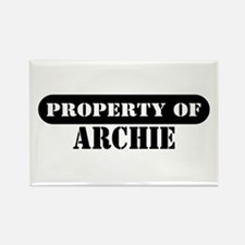 Property of Archie Rectangle Magnet