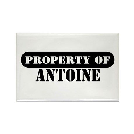 Property of Antoine Rectangle Magnet