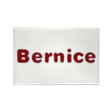 Bernice Santa Fur Rectangle Magnet 100 Pack