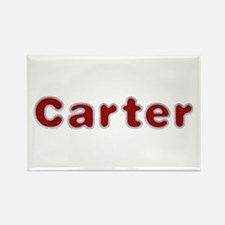 Carter Santa Fur Rectangle Magnet