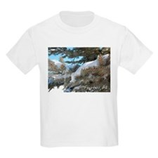 Flagstaff, Arizona Kids T-Shirt