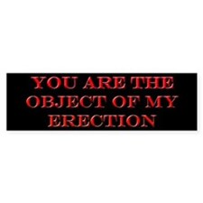 Object of My Erection Bumper Bumper Sticker