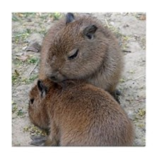 Capybara001 Tile Coaster