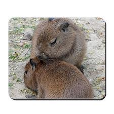 Capybara001 Mousepad