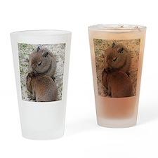 Capybara001 Drinking Glass