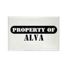 Property of Alva Rectangle Magnet