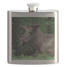 Elk002 Flask