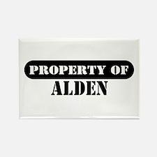 Property of Alden Rectangle Magnet