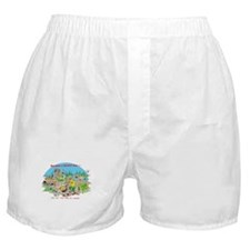 DO NOT try this at home Boxer Shorts