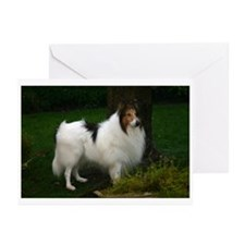 Bobby Greeting Cards (Pk of 10)