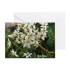 Garlic Chives Greeting Cards