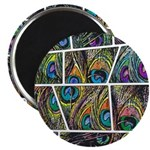 Peacock Cartoon - Magnet
