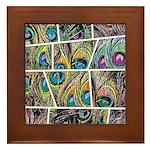 Peacock Cartoon - Framed Tile