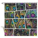 Peacock Cartoon - Shower Curtain