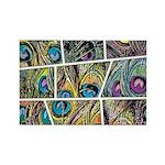 Peacock Cartoon - Rectangle Magnet (100 pack)