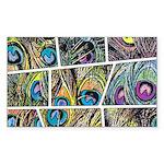 Peacock Cartoon - Sticker (Rectangle 50 pk)
