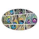 Peacock Cartoon - Sticker (Oval 50 pk)