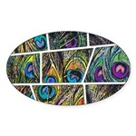 Peacock Cartoon - Sticker (Oval 10 pk)