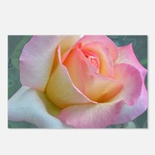 SOFTLY ROSE Postcards (Package of 8)