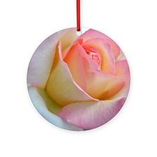 SOFTLY ROSE Round Ornament
