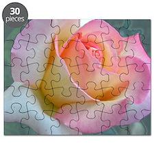 SOFTLY ROSE Puzzle