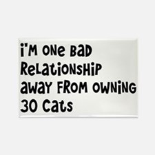 Cat Lady: One Bad Relationship Away Rectangle Magn