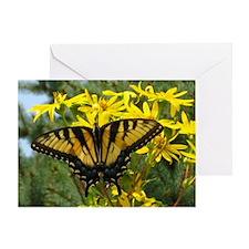Beautiful Eastern Tiger Swallowtail  Greeting Card