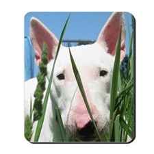 Cute English Bull Terrier Hiding in the  Mousepad