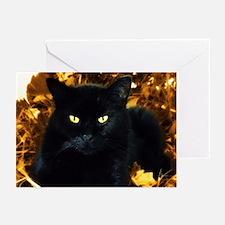 Halloween Cat Greeting Cards (Pk of 20)