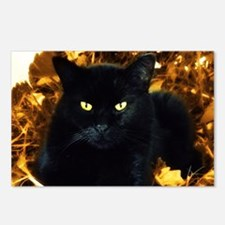Halloween Cat Postcards (Package of 8)