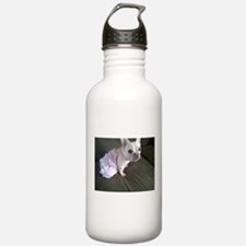 Cute White french bulldog Water Bottle