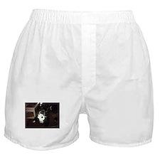 Hi 5 Boxer Shorts