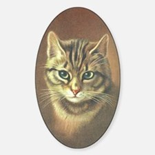 Brown Kitty Oval Decal